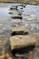 stepping_stones_for_web(3)
